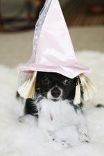 Lucy-princess